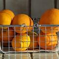 Orangey by Dan Holm