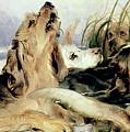 Otter Hounds by Sir Edwin Landseer