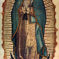 Our Lady Of Guadalupe by Pam Neilands