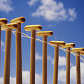 Paddles Hanging In A Row by Joss - Printscapes