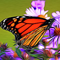 Painted Butterfly by David Kehrli