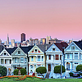 Painted Ladies At Dusk by Photo by Jim Boud