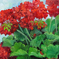 Painting Of Red Geraniums by Cheri Wollenberg