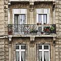 Paris Windows by Elena Elisseeva