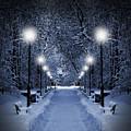 Park At Christmas by Jaroslaw Grudzinski