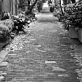 Patchwork Pathway by Dustin K Ryan