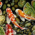 Pebbles And Koi by Elizabeth Robinette Tyndall