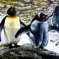 Penguines Original Oil Painting by Natalja Picugina