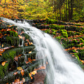 Pennsylvania Autumn Ricketts Glen State Park Waterfall by Mark VanDyke