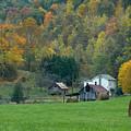 Pennsylvania Farm by Tony  Bazidlo