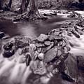 Pigeon Forge River Great Smoky Mountains Bw by Steve Gadomski