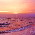 Pink Sunrise by Kristin Elmquist