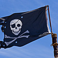 Pirate Flag Skull And Cross Bones by Garry Gay