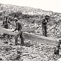Placer Gold Mining C. 1889 by Daniel Hagerman