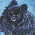 Pomeranian black Print by Lee Ann Shepard