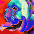 Pop Art English Bulldog painting prints Print by Svetlana Novikova
