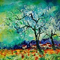 Poppies And Appletrees In Blossom by Pol Ledent