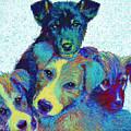 Pound Puppies by Jane Schnetlage
