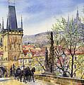 Prague Charles Bridge Spring by Yuriy  Shevchuk