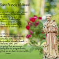 Prayer Of St. Francis Of Assisi by Bonnie Barry