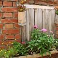Pretty Garden Wall by Yali Shi