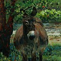 Provence Donkey by Nadine Rippelmeyer