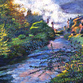 Provence River by David Lloyd Glover