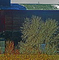 Pueblo Downtown-sweeny Feed Mill 6 by Lenore Senior
