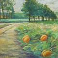 Pumpkin Patch by Leslie Alfred McGrath