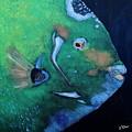 Queen Angelfish by Barbara Teller