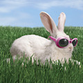 Rabbit With Sunglasses by George Caswell