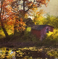 Red Barn In Autumn by Joann Vitali