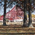 Red Barn Through The Trees by Pamela Baker