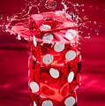 Red Dice Splash by Steve Gadomski