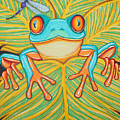 Red Eyed Tree Frog And Dragonfly by Nick Gustafson