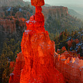 Red Glow Of The Sunrise On Thor's Hammer In Bryce Canyon by Pierre Leclerc Photography