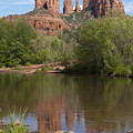 Red Rock Crossing In Sedona by Sandra Bronstein