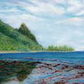 Reef Walk by Kenneth Grzesik
