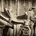 Retired Saddle by Christine Hauber