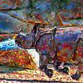 Rhino On The Run by Marilyn Sholin