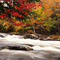 River Rapids Fall Nature Scenery by Oleksiy Maksymenko