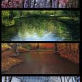 River Seasons by Susan Jenkins