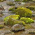 River Stones by Paul Bartoszek