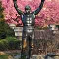 Rocky In Spring by Bill Cannon