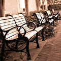Romantic Surreal Park Bench Pink Sepia Tones by Kathy Fornal