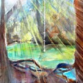 Rope Swing by Carlin Blahnik