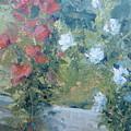 Rose Garden by Bryan Alexander
