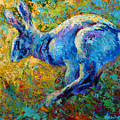 Running Hare by Marion Rose