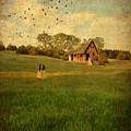 Rural Cottage by Jill Battaglia