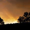 Rural Glory by Mike  Dawson